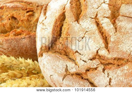 detail of freshly baked bread and baguette