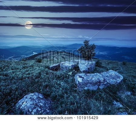 Tree And Boulders On Hillside Meadow In Mountain At Night