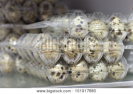 Quail Eggs In Trays On A Shelf In The Refrigerator
