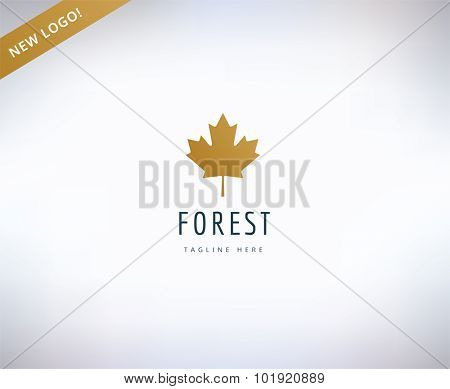 Leaf map logo icon. Nature, spa or leafs and forest. Stock design element.