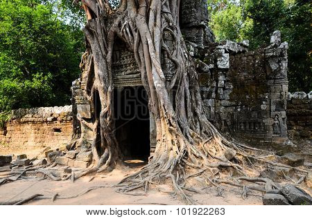 Ta Som, part of Khmer Angkor temple complex, popular among tourists ancient landmark and place of worship in Southeast Asia. Siem Reap, Cambodia.