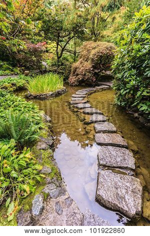 The track of stones in  water in Japanese part of garden. Decorative private garden on Vancouver Island in Canada