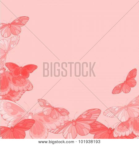 Beautiful pink background with butterflies