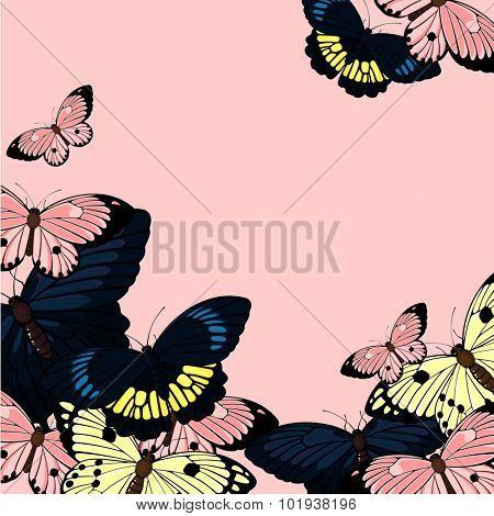 Beautiful card with butterflies, with a place for your text