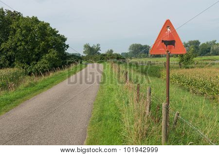 Cattle Crossing Sign
