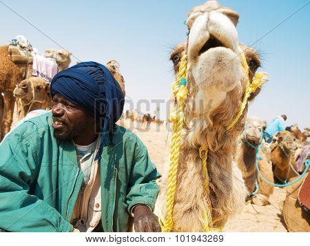 Tunisian Man With Camel