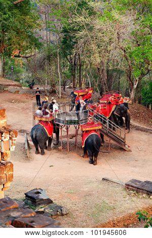 Elephant Ride In Angkor Wat, Cambodia