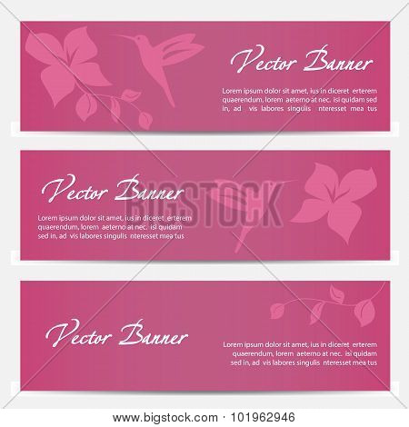 Vector image of an hummingbird banner design on pink background