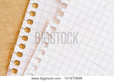 Ripped Notepad Sheet With Rough Edges