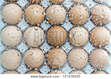 Eggs Under Water Drops Background