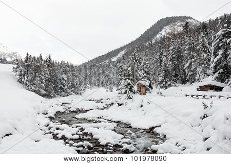 Alpine Stream, Swiss National Park