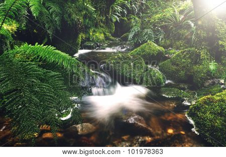 Cascading Waterfall Pancake Rocks New Zealand Concept