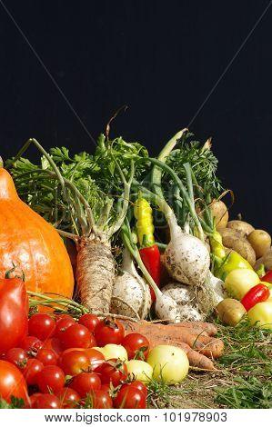 bio vegetables still life