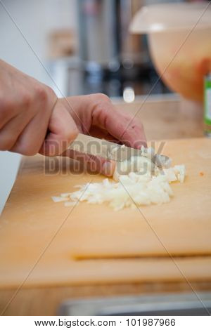 Woman Chopping Onions In The Kitchen