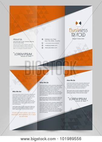 Professional multicolor Business Trifold, Flyer, Banner, Template or Catalog design.