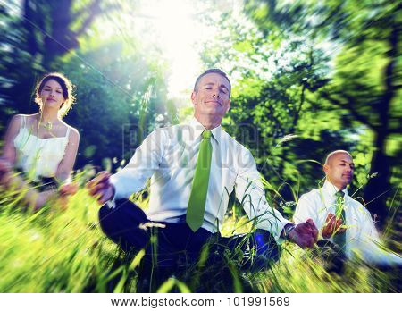 Business People Meditating Nature Relaxation Concept