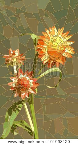 Vector Illustration Of Flowers Yellow Helichrysum.