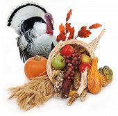 picture of horn plenty  - horn of plenty with autumn harvest of leaves wheat pumpkin squash corn apples pear and grapes - JPG