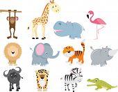 Постер, плакат: Симпатичные диких сафари животных мультфильм набор