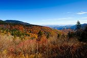 Blue Ridge Parkway Fall Colors