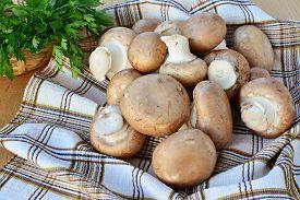 foto of crimini mushroom  - Brown cap cremini mushrooms over wooden table - JPG