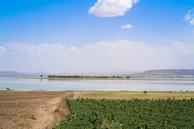 picture of ethiopia  - Landscape view at the Lake Koka in Ethiopia - JPG