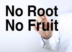picture of sarcastic  - Businessman is pointing the text No Root No Fruit on the virtual transparent screen - JPG