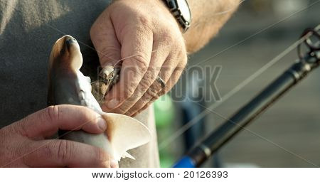 Removing Fish Bait
