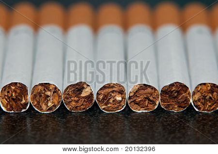 Couple cigarettes close up photo in studio