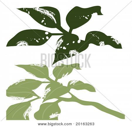 grungy eaten leaves for your designs