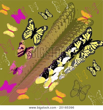 butterflies deconstruction