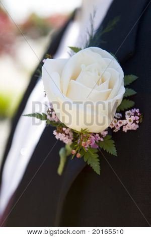 beautiful white rose on lapel