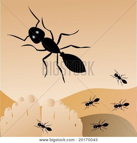 ants crawling on feet vector