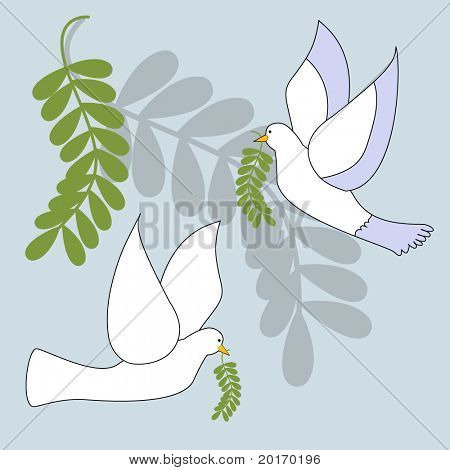 dove with olive branch illustration