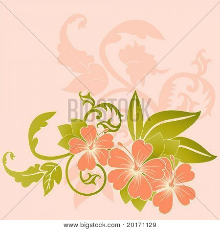 coral hibiscus with filigree leaves