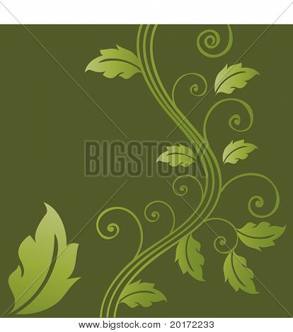 foliage with quirky coils vector
