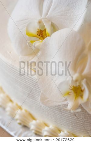 elegant wedding cake with white orchids
