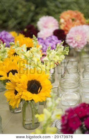 sunflowers in a mason jar - country style