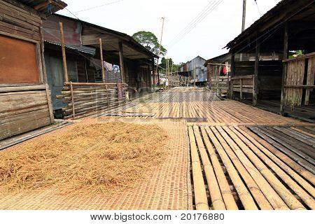 borneo longhouse
