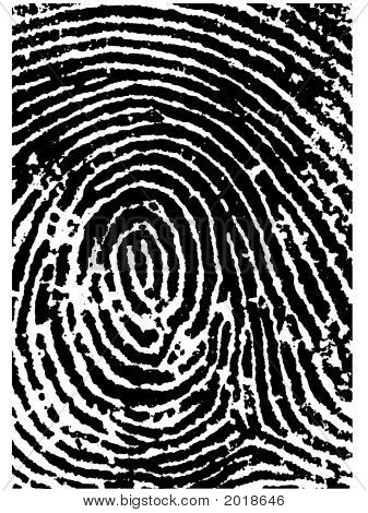 Fingerprint Crop 2