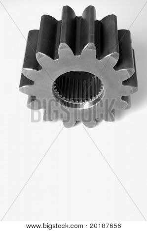 single gear, cog against white background ideal for clipping