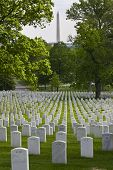 stock photo of arlington cemetery  - Arlington National Cemetery in Arlington County Virginia is a military cemetery in the United States of America - JPG