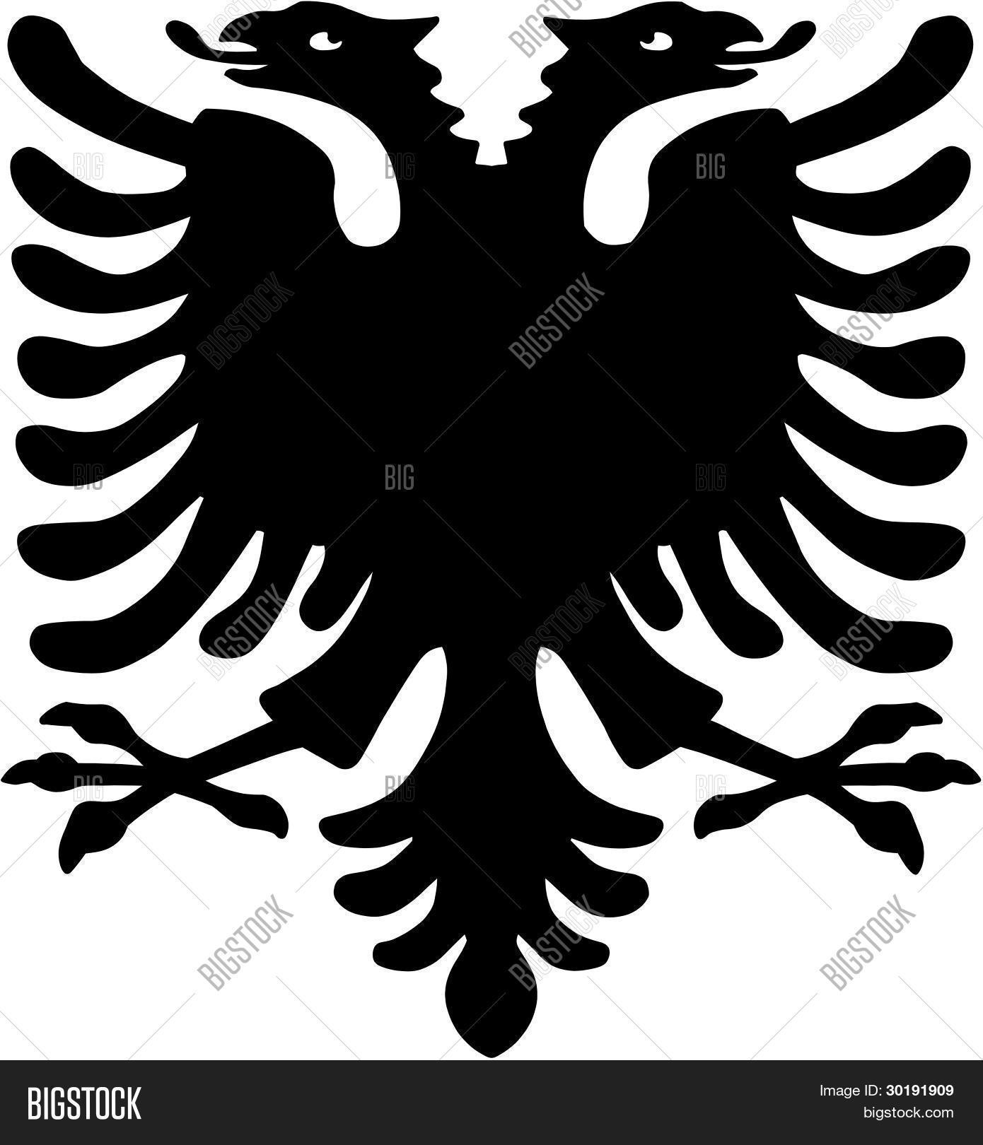 albanischer adler stock vektorgrafiken stockfotos