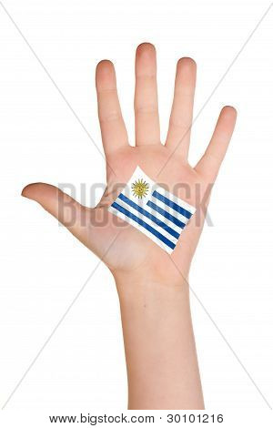 The Uruguayan flag painted on the palm.