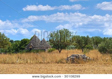Trullo in countryside. Noci. Puglia. Italy.