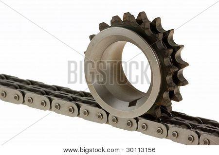 Close-up Gear On Top Of The Chain