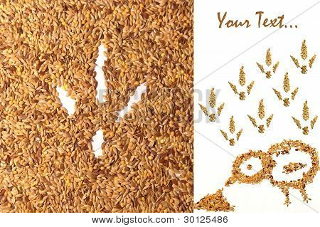 Seed And Bird's Footprint On Agricultural Thematic Card