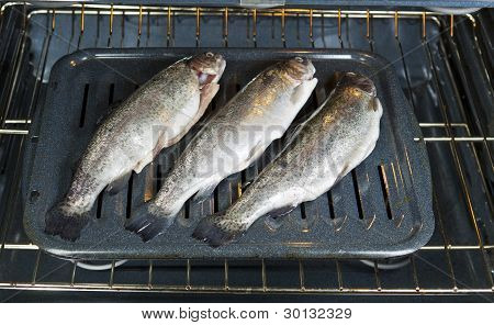 Fish Oven Bound