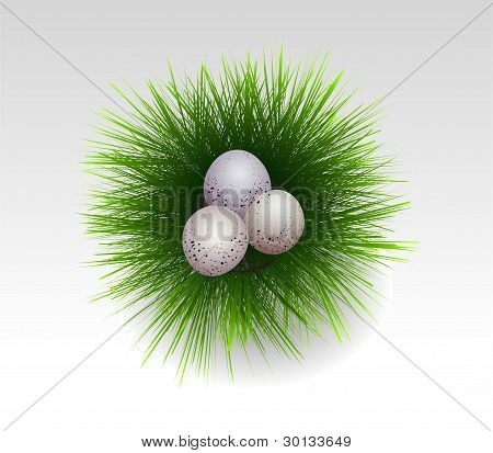Easter Eggs In Fresh Grass. Vector Illustration