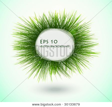 Round Frame With Fresh Spring Grass